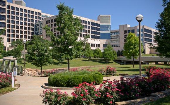 The UT Southwestern Medical
